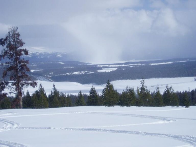 SnowSqual
